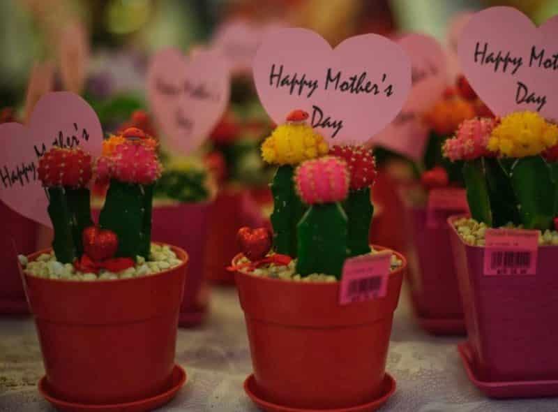 Ucapan Hari Ibu Untuk Calon Mertua