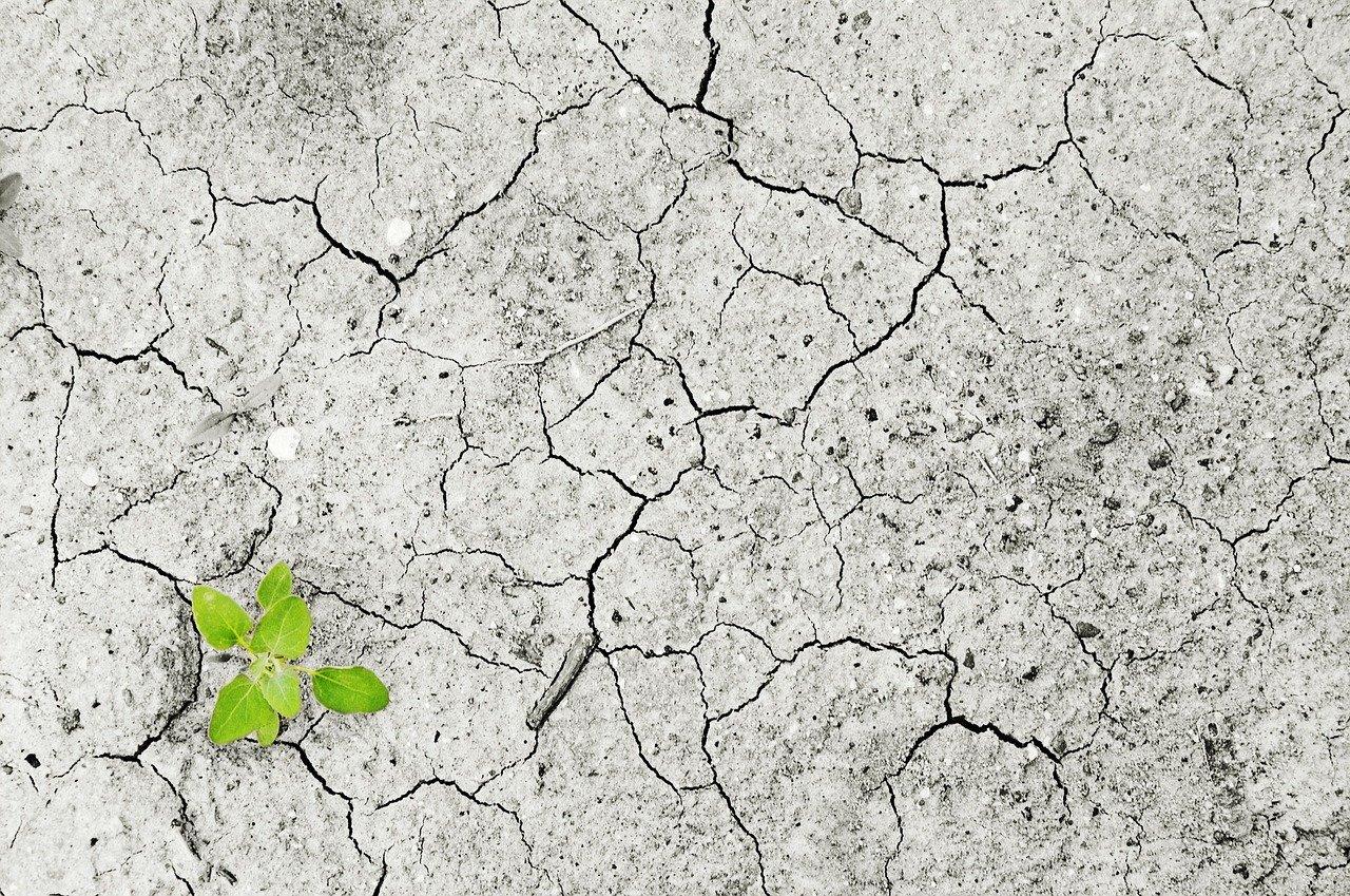 Beberapa Hal Yang Bisa Menyebabkan Polusi Pada Tanah Terjadi