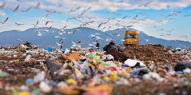Dampak yang Timbul Karena Pencemaran Tanah