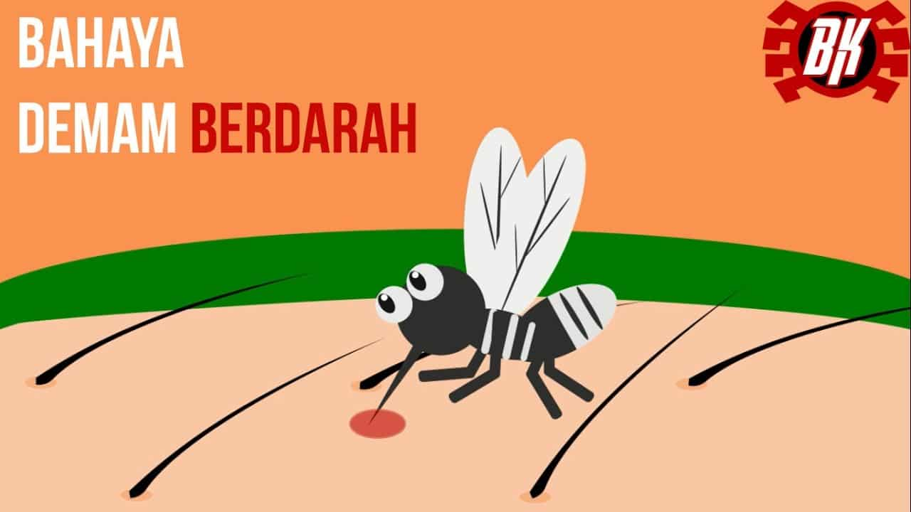 Iklan Layanan Masyarakat Bahaya Demam Berdarah Dengue