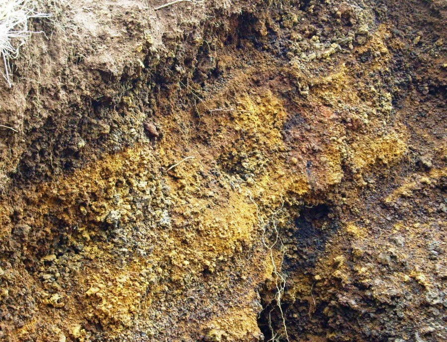 Jenis Tanah Andosol
