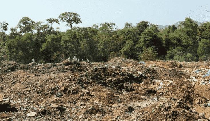 Jenis-jenis Tanah Ditinjau dari Asalnya