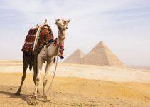 Kumpulan Doa Nabi Yusuf Beserta Arti, Arab dan Latinnya 6