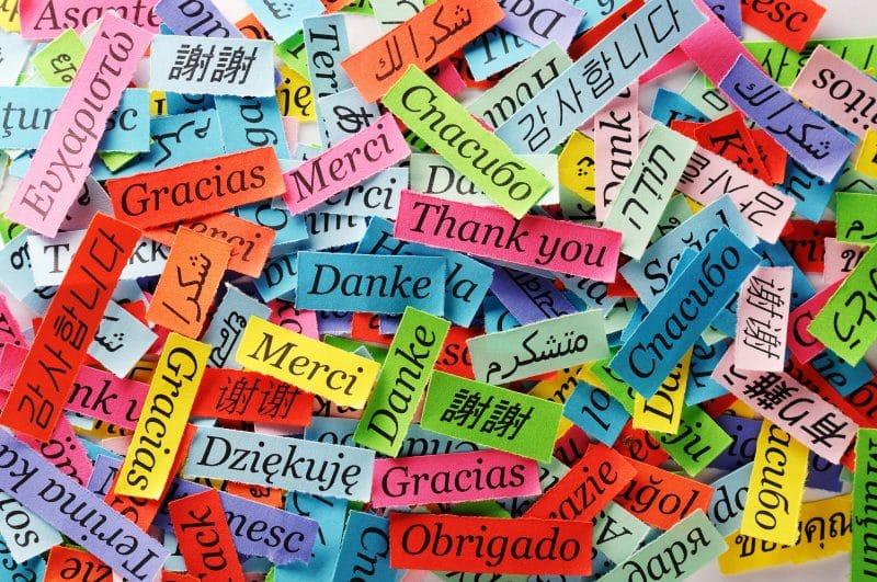 Contoh Teks Eksposisi Tentang Pendidikan Bahasa