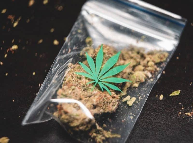 Contoh Teks Dakwah Tentang Narkoba