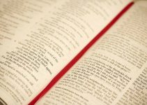 14 Contoh Teks Narasi (Lengkap dengan definisi, ciri-ciri, dan jenis teks) 2
