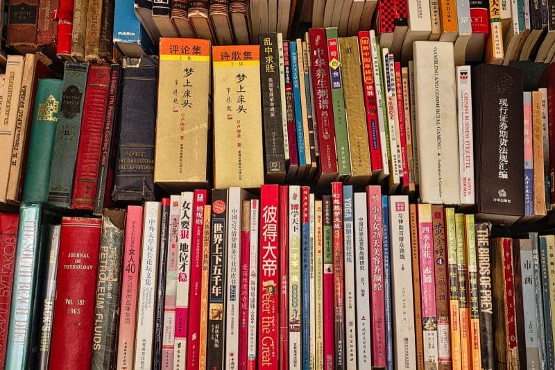 Contoh Teks Narasi Novel