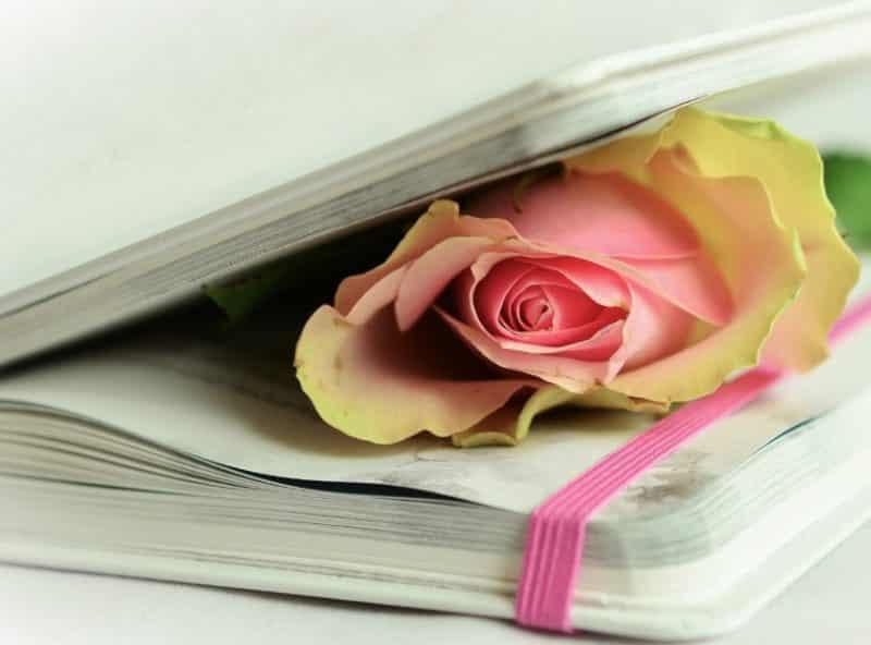 Contoh Teks Ulasan Puisi