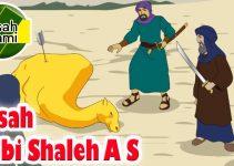 Kisah Nabi Shaleh : Mukjizat, Biografi, Kisah Kaum Tsamud 6