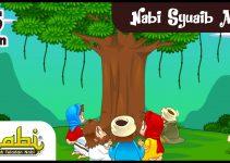 Kisah Nabi Syuaib : Dakwah, Adzab Kaum Madyan dan Aikah 7