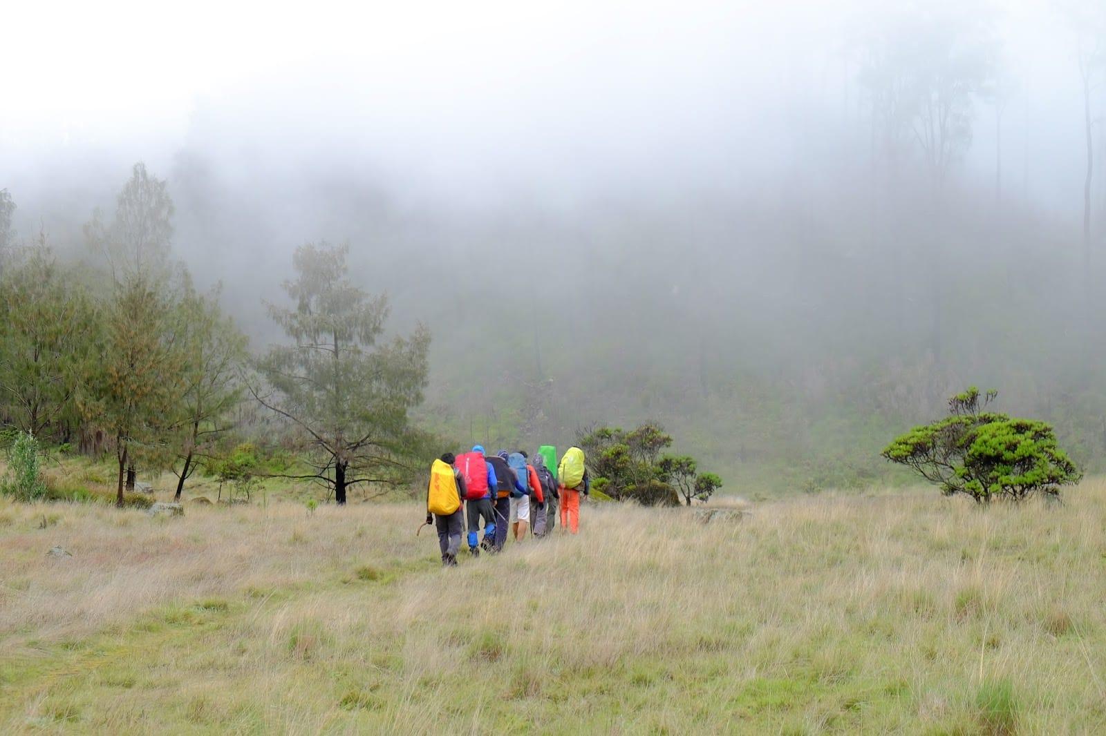 25. Gunung Argopuro