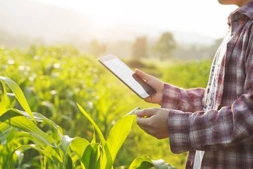 4. Industri Pertanian