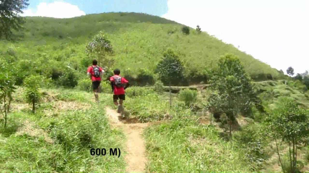 45+ Gunung Tertinggi di Indonesia Yang Indah Dan Wajib Di Kunjungi 10