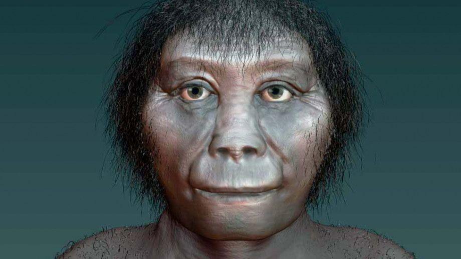 5. Homo Floresiensis