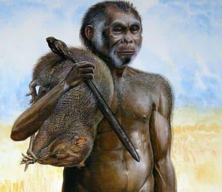 6. Homo Wajakensis