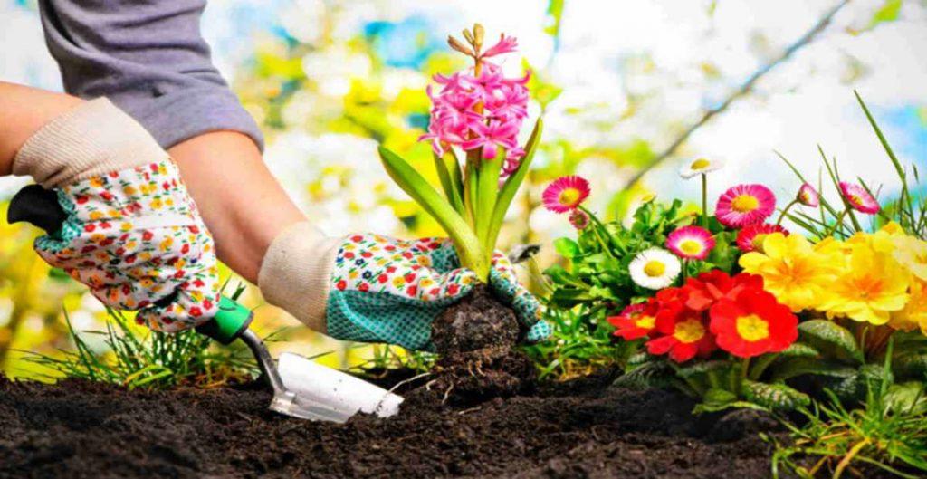 Membantu dalam hal penekanan polusi di lingkungan sekitar