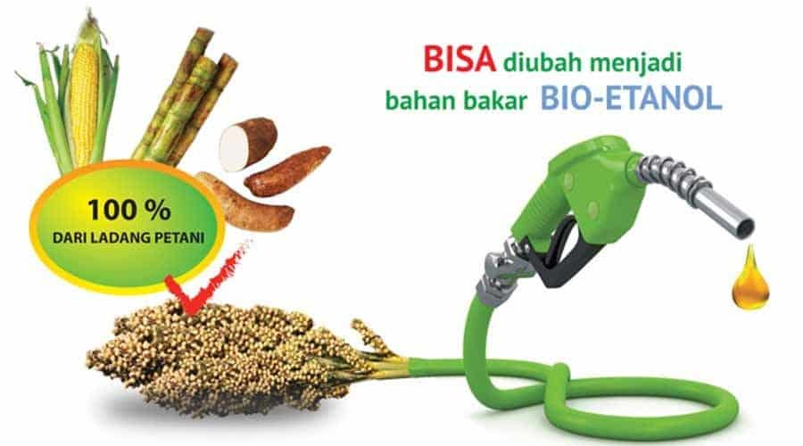 Sumber Energi Alternatif Etanol