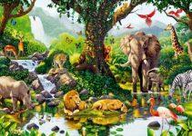 Pengertian Ekosistem, Komponen, Keanekaragaman Dll (Terlengkap) 7