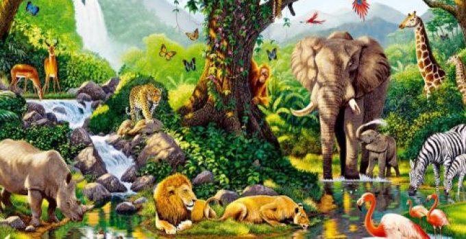 Pengertian Ekosistem, Komponen, Keanekaragaman Dll (Terlengkap) 1
