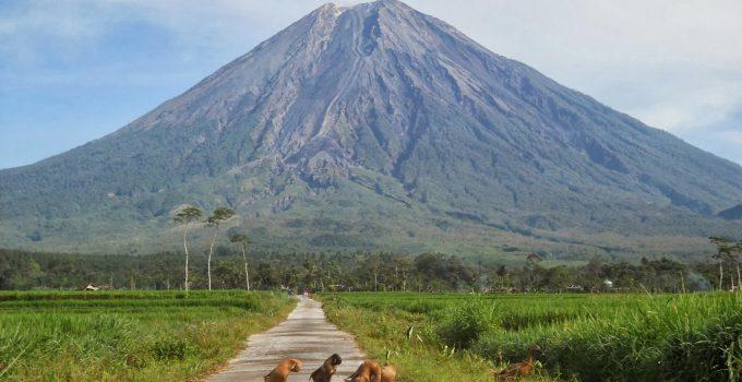 45+ Gunung Tertinggi di Indonesia Yang Indah Dan Wajib Di Kunjungi 7