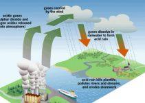 Hujan Asam : Manfaat, Cara Mengatasi, Proses, Dampaknya (Lengkap) 6