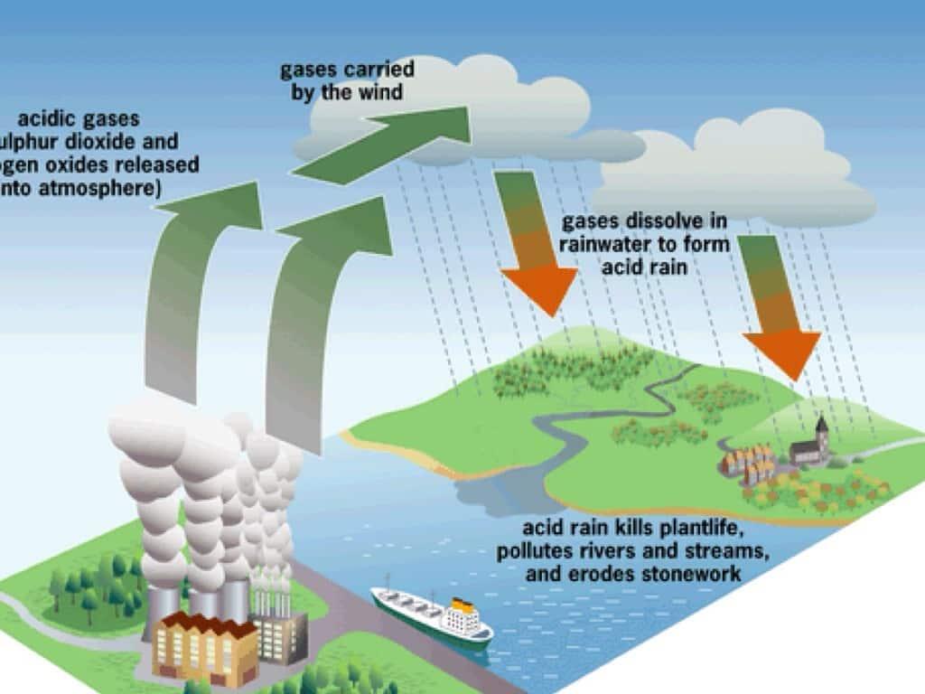 Hujan Asam : Manfaat, Cara Mengatasi, Proses, Dampaknya (Lengkap) Sekolahnesia