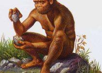 8+ Jenis Manusia Purba Di Indonesia, Dunia, Kepercayaannya (Lengkap) 2
