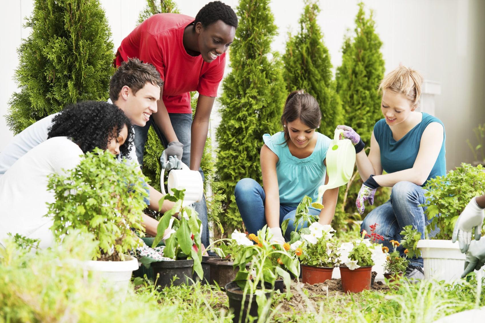 Contoh Kata Pengantar Skripsi Pertanian (Agroteknologi)