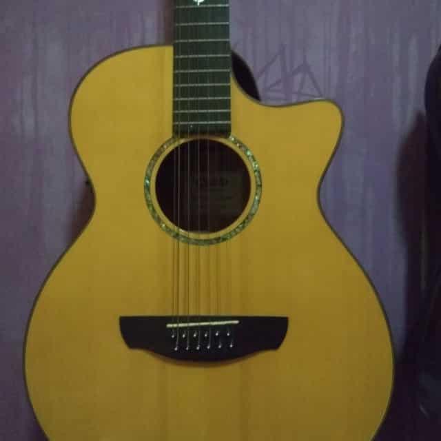 Gitar 12 Senar