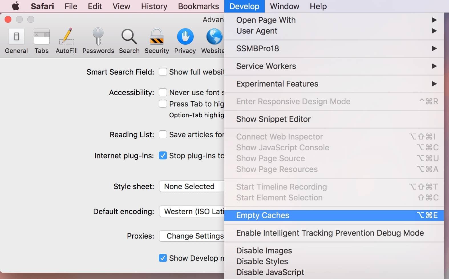 Menghapus Cache di Browser Safari (MacOS)